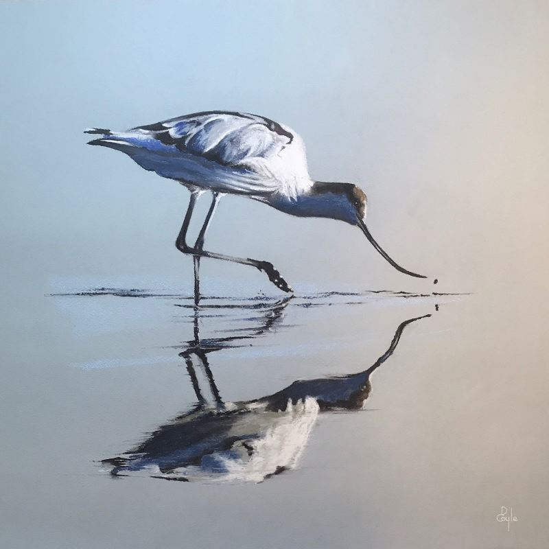 Avocet Reflection (SOLD)