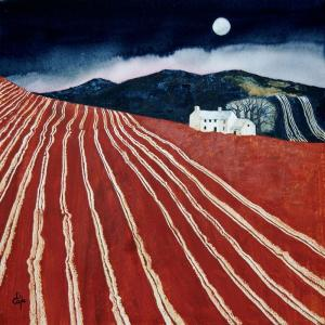 Moonlit Farm with Ploughed Field